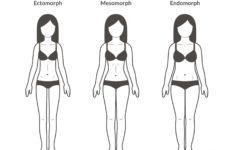 Body Types Explained: Ectomorph, Endomorph, Mesomorph