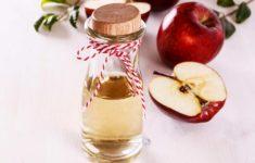 Apple Cider Vinegar Weight Loss Explained