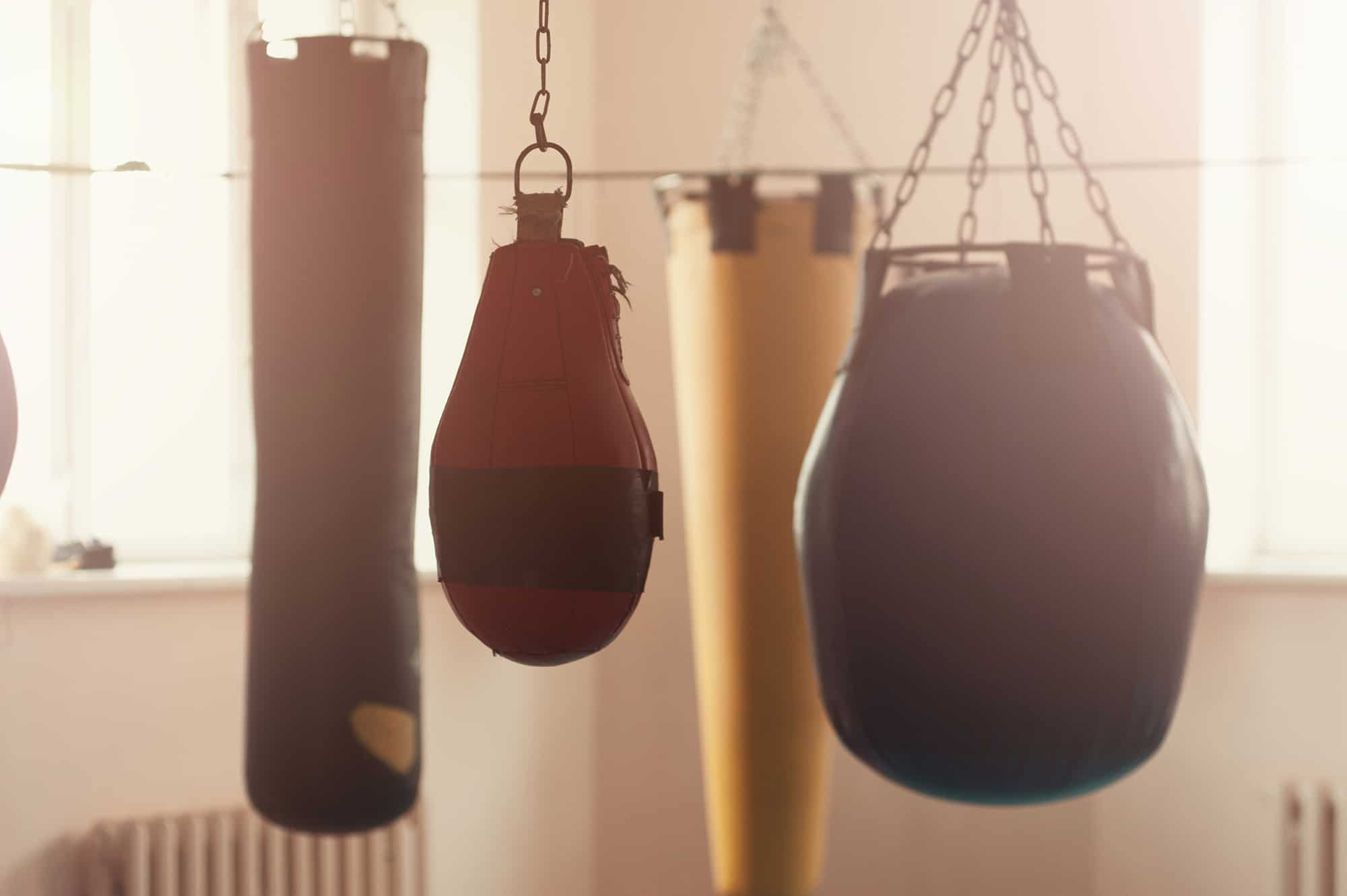 Row of boxing bags in the sports gym